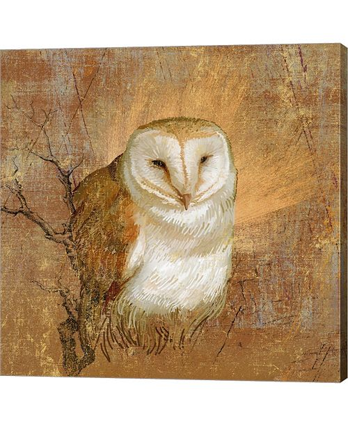 Metaverse Owl In The Wood By Art Licensing Studio Canvas Art