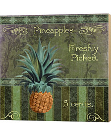 Fresh Pineapples By Mindy Sommers Canvas Art