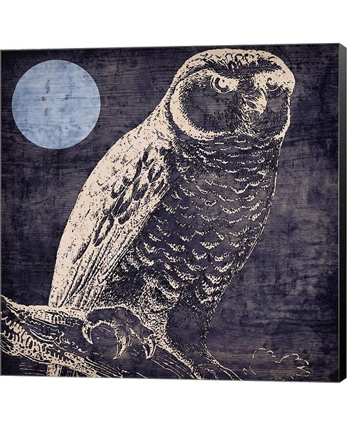 Metaverse Owl 1 By Color Bakery Canvas Art