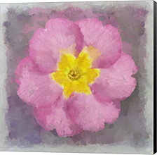 Primrose Pink By Cora Niele Canvas Art