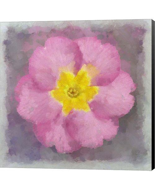 Metaverse Primrose Pink By Cora Niele Canvas Art