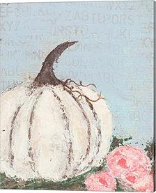 Pumpkin I By Cassandra Cushman Canvas Art