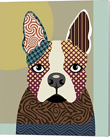 Boston Terrier By Lanre Adefioye Canvas Art