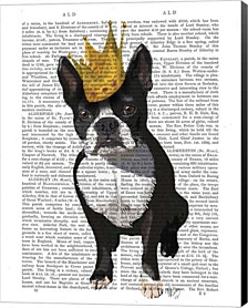 Boston Terrier And Crown By Fab Funky Canvas Art