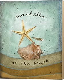 Seashells by Beth Albert Canvas Art