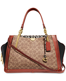 COACH Coated Canvas Signature Exotic Dreamer 36 Satchel