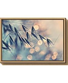 Amanti Art Pastel Grains by Dimitar Lazarov - Canvas Framed Art