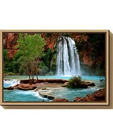 Amanti Art Havasu Falls by Andy Magee Canvas Framed Art