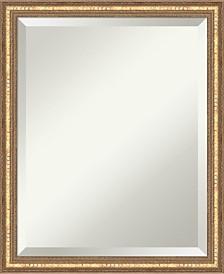 Amanti Art Cyprus 45x35 Wall Mirror