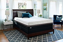 "Conform 12"" Gratifying Firm Mattress Collection"