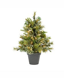 24 inch Cashmere Pine Artificial Christmas Tree With 50 Clear Lights