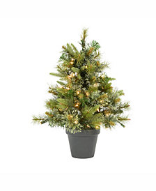 Vickerman 24 inch Cashmere Pine Artificial Christmas Tree With 50 Clear Lights