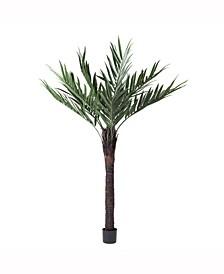 "72"" Artificial Kentia Palm"