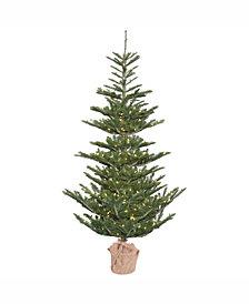 Vickerman 4' Alberta Spruce Artificial Christmas Tree