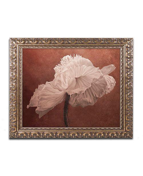 """Trademark Global Cora Niele 'White Poppy' Ornate Framed Art, 11"""" x 14"""""""