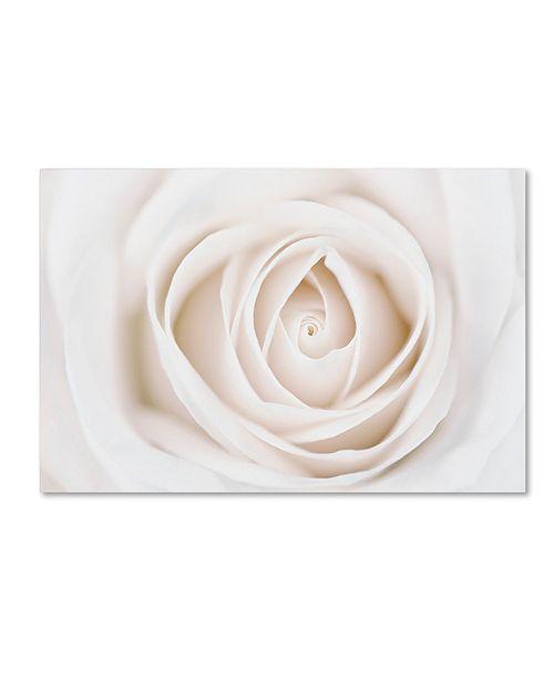 "Trademark Global Cora Niele 'White Rose' Canvas Art, 12"" x 19"""