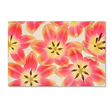 Cora Niele 'Yellow and Coral Red Tulips' Canvas Art