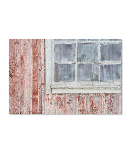 "Trademark Global Cora Niele 'Little Windows I' Canvas Art, 12"" x 19"""