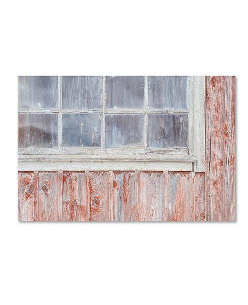 "Trademark Global Cora Niele 'Little Windows II' Canvas Art, 16"" x 24"""