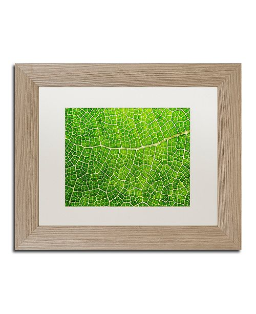 "Trademark Global Cora Niele 'Green Leaf Texture' Matted Framed Art, 11"" x 14"""