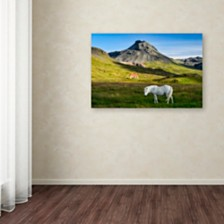 "Michael Blanchette Photography 'Below the Volcano' Canvas Art, 12"" x 19"""