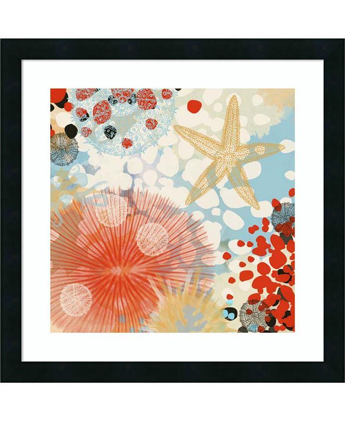 Amanti Art - Exotic Sea Life II 22x22 Framed Art Print