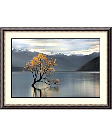 Amanti Art Undisturbed  Framed Art Print