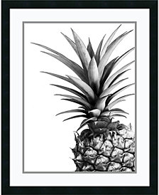Amanti Art Pineapple Framed Art Print