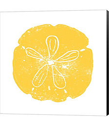 Yellow Sand Dollar by Veruca Salt Canvas Art