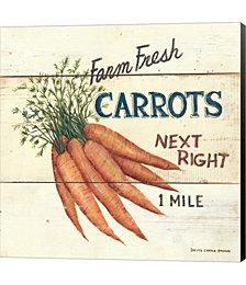Farm Fresh Carrots by David Carter Brown Canvas Art