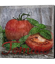 Vintage Tomatoes by Andrea Haase Canvas Art