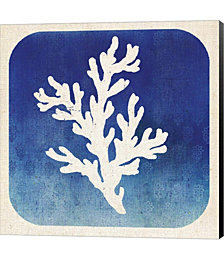 Watermark Coral by Studio Mousseau Canvas Art