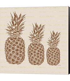 Three Pineapples by Ramona Murdock Canvas Art