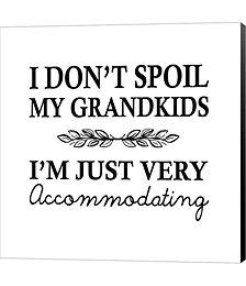 I Don't Spoil My Grandkids Leaf Design White by Color Me Happy Canvas Art