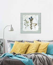"""iCanvas """"Pressed Flowers On Shiplap I"""" by Carol Robinson Gallery-Wrapped Canvas Print"""