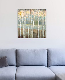 """iCanvas """"Nature's Palette I"""" by Ruane Manning Gallery-Wrapped Canvas Print"""