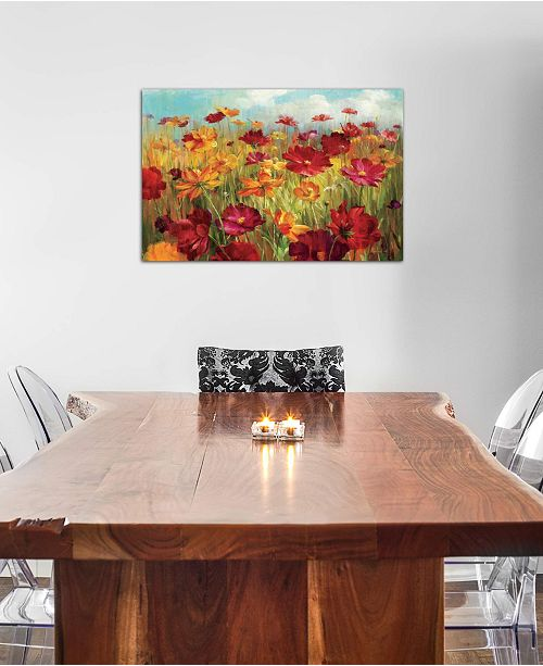 """iCanvas """"Cosmos in the Field"""" by Danhui Nai Gallery-Wrapped Canvas Print (26 x 40 x 0.75)"""