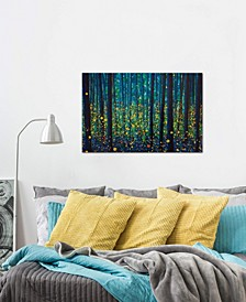"iCanvas ""Fireflies"" by db Gallery-Wrapped Canvas Print (18 x 26 x 0.75)"