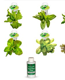 Goodful™ by AeroGarden 6-Pod Heirloom Salad Seed Kit