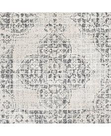 "Surya Harput HAP-1083 Light Gray 18"" Square Swatch"