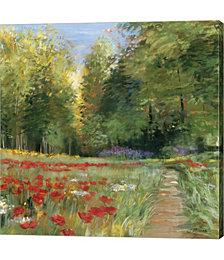 Field of Flowers by Carol Rowan Canvas Art