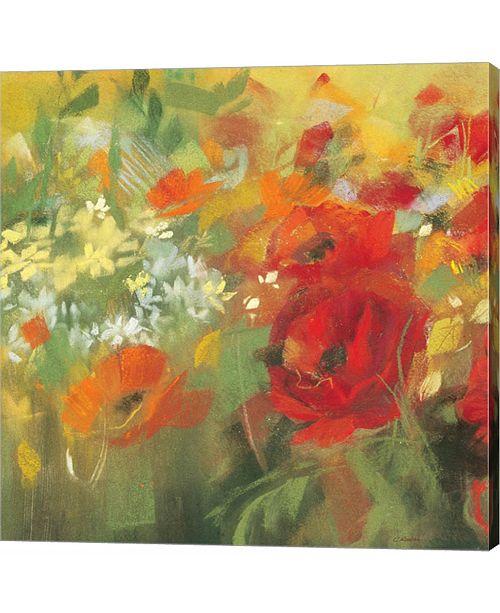 Metaverse Oriental Poppy Field II by Carol Rowan Canvas Art