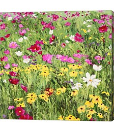 Country Flowers by Silvia Mei Canvas Art
