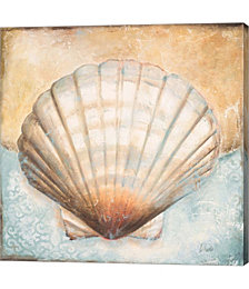 Seashell Collection III by Patricia Pinto Canvas Art