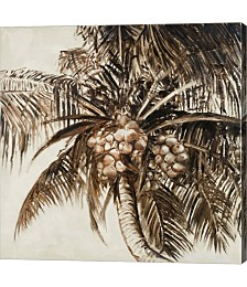 Coconut Palm I by Patricia Pinto Canvas Art