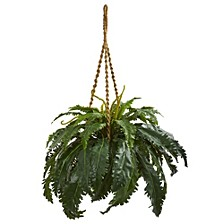 Marginatum Artificial Plant in Hanging Basket