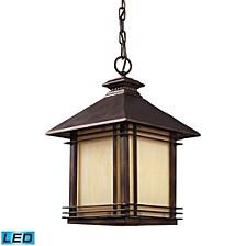 1 Light Outdoor Pendant in Hazlenut Bronze - LED Offering Up To 800 Lumens (60 Watt Equivalent)