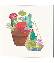 Succulent Garde by Wild Apple Portfolio