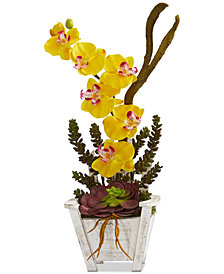 Nearly Natural Phalaenopsis Orchid & Succulent Artificial Arrangement in Chair Planter
