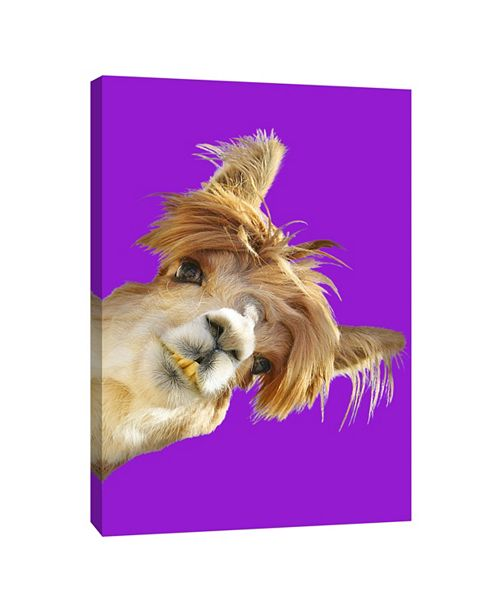 PTM Images On Purple Decorative Canvas Wall Art